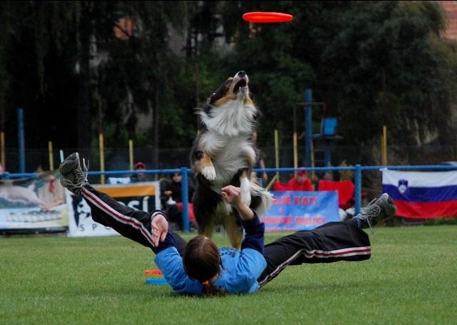 Jimík s Pavlou na ME v dogfrisbee